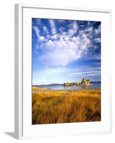 Altocumulus Clouds above Rushes and Tufa on Shore of Mono Lake, California, USA-Scott T^ Smith-Framed Art Print