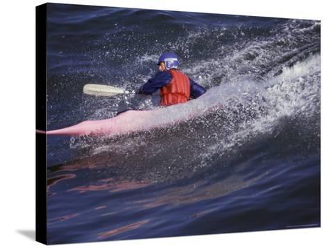 Kayak Surfing, Santa Cruz, California, USA-Stuart Westmoreland-Stretched Canvas Print