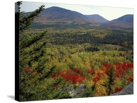 Fall Colors in Wassataquoik Valley, Northern Hardwood Forest, Maine-Jerry & Marcy Monkman-Stretched Canvas Print