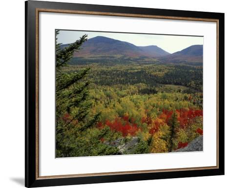 Fall Colors in Wassataquoik Valley, Northern Hardwood Forest, Maine-Jerry & Marcy Monkman-Framed Art Print