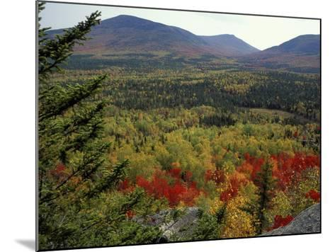 Fall Colors in Wassataquoik Valley, Northern Hardwood Forest, Maine-Jerry & Marcy Monkman-Mounted Photographic Print
