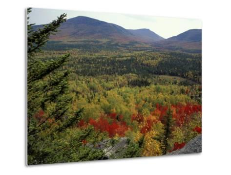 Fall Colors in Wassataquoik Valley, Northern Hardwood Forest, Maine-Jerry & Marcy Monkman-Metal Print