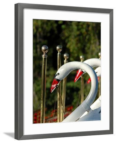 Swan Boats in Public Garden, Boston, Massachusetts-Lisa S^ Engelbrecht-Framed Art Print