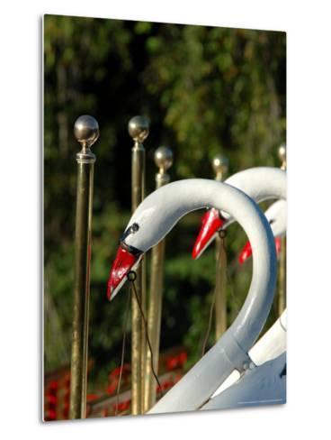 Swan Boats in Public Garden, Boston, Massachusetts-Lisa S^ Engelbrecht-Metal Print