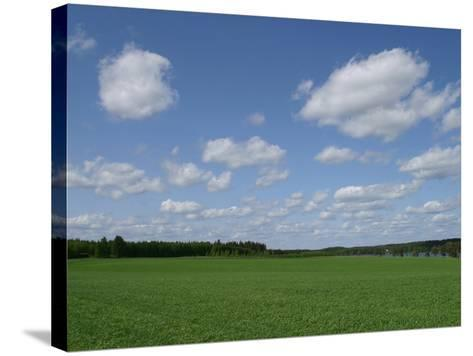 An Expanse of Lush Green Grass with Blue Sky and Flutty Clouds by a River--Stretched Canvas Print