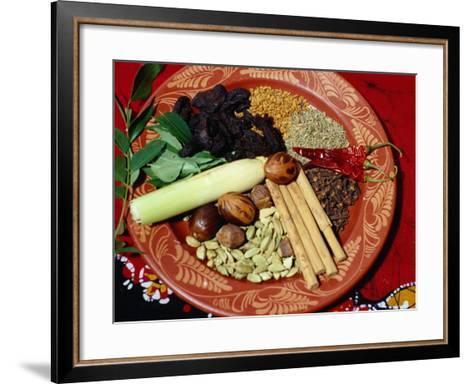 Selection of Spices for Sri Lankan Cooking, Sri Lanka-Richard Nebesky-Framed Art Print