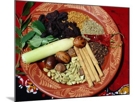 Selection of Spices for Sri Lankan Cooking, Sri Lanka-Richard Nebesky-Mounted Photographic Print