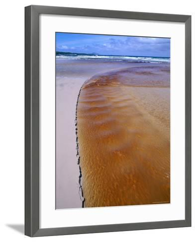 Tannin Stained Stream, Usually Caused by Tea-Tree, South West National Park, Tasmania, Australia-Grant Dixon-Framed Art Print