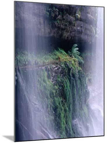 Cascading Waters of Russell Falls, Mt. Field National Park, Tasmania, Australia-Grant Dixon-Mounted Photographic Print