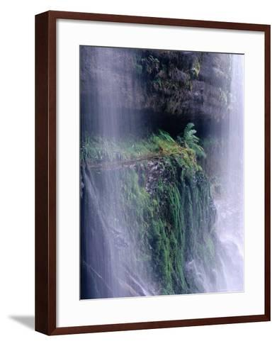 Cascading Waters of Russell Falls, Mt. Field National Park, Tasmania, Australia-Grant Dixon-Framed Art Print