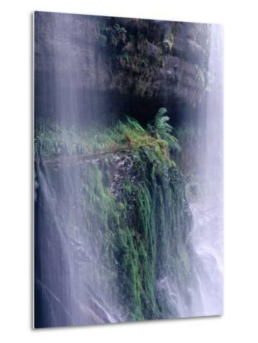 Cascading Waters of Russell Falls, Mt. Field National Park, Tasmania, Australia-Grant Dixon-Metal Print