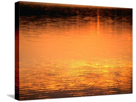 Evening Reflections on Lake Itasca, Itasca State Park, USA-John Elk III-Stretched Canvas Print
