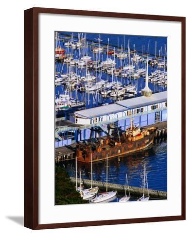 Chaeffers Marina at Oriental Bay, Wellington, Wellington, New Zealand-Paul Kennedy-Framed Art Print