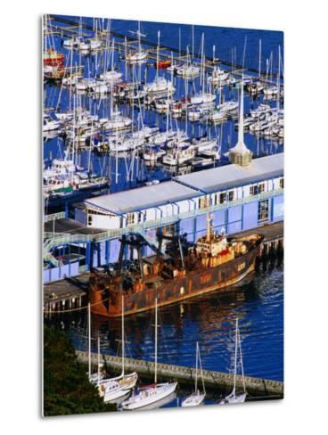 Chaeffers Marina at Oriental Bay, Wellington, Wellington, New Zealand-Paul Kennedy-Metal Print