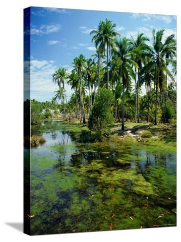 Village and Lagoon, Marang, Terengganu, Malaysia-Richard I'Anson-Stretched Canvas Print