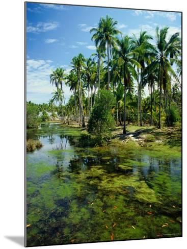 Village and Lagoon, Marang, Terengganu, Malaysia-Richard I'Anson-Mounted Photographic Print