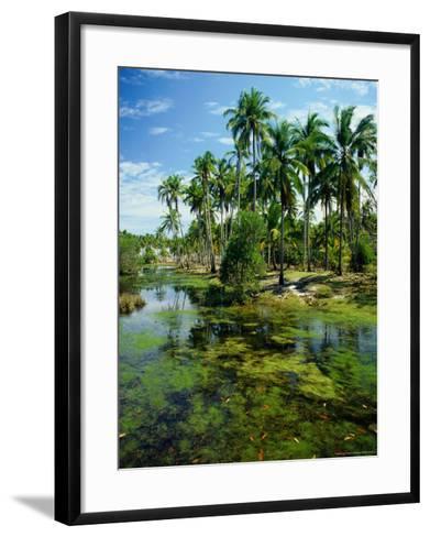 Village and Lagoon, Marang, Terengganu, Malaysia-Richard I'Anson-Framed Art Print