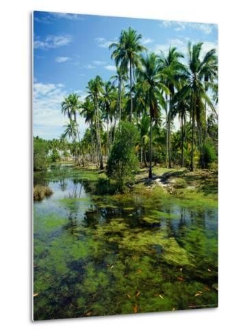 Village and Lagoon, Marang, Terengganu, Malaysia-Richard I'Anson-Metal Print