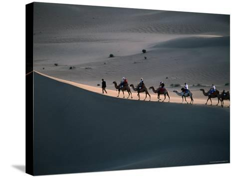 Camel Caravan Walk on Sand Dune in Taklamakan Desert, China-Keren Su-Stretched Canvas Print
