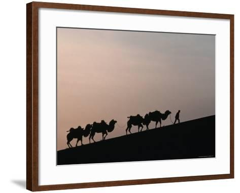 Camel Caravan Silhouetted at Dawn on the Silk Road, Dunhuang, China-Keren Su-Framed Art Print