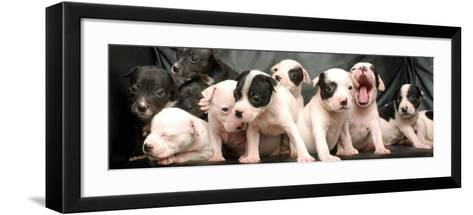 Puppy Love--Framed Art Print