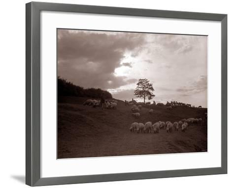 A Shepherd Surveys His Flock at the End of the Day, 1935--Framed Art Print