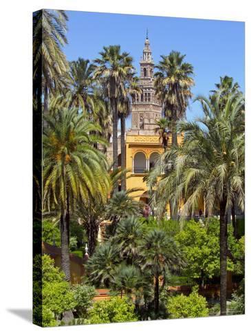 Giralda Tower Seen from Alcazar Gardens, Seville, Spain-Alan Copson-Stretched Canvas Print