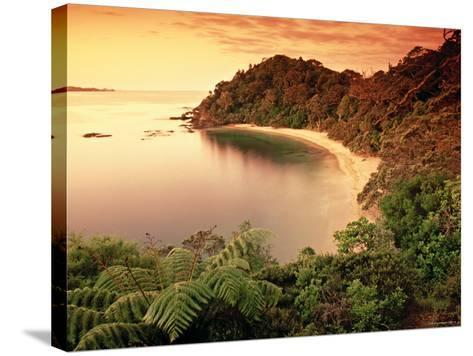 Whale Bay, Northland, New Zealand-Doug Pearson-Stretched Canvas Print