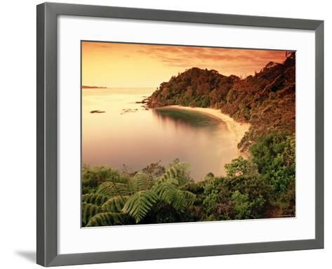 Whale Bay, Northland, New Zealand-Doug Pearson-Framed Art Print