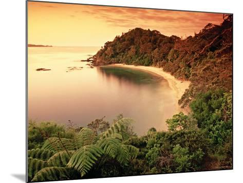 Whale Bay, Northland, New Zealand-Doug Pearson-Mounted Photographic Print