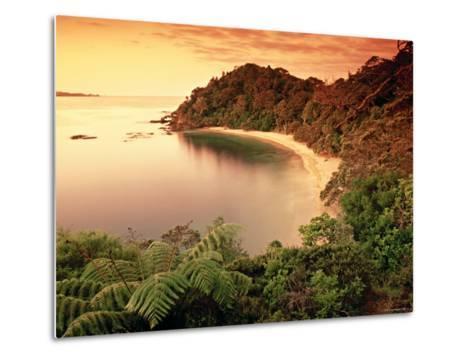Whale Bay, Northland, New Zealand-Doug Pearson-Metal Print