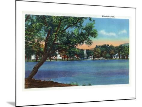 Elmira, New York - View of Eldridge Park-Lantern Press-Mounted Art Print