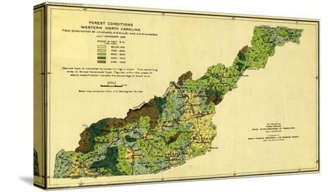 Forests of Western North Carolina - Panoramic Map-Lantern Press-Stretched Canvas Print