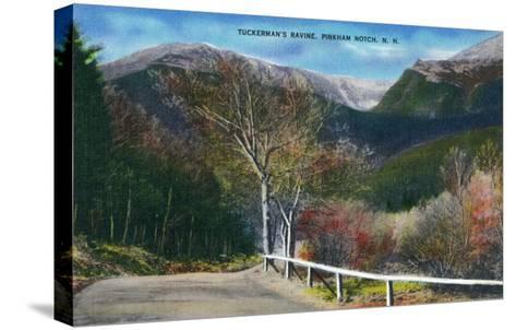 Pinkham Notch, New Hampshire - View of Tuckermans Ravine-Lantern Press-Stretched Canvas Print