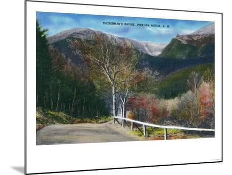Pinkham Notch, New Hampshire - View of Tuckermans Ravine-Lantern Press-Mounted Art Print