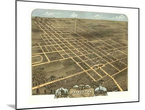 Princeton, Illinois - Panoramic Map-Lantern Press-Mounted Art Print