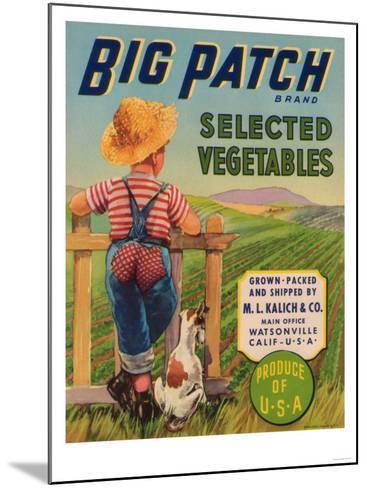 Big Patch Vegetable Label - Watsonville, CA-Lantern Press-Mounted Art Print