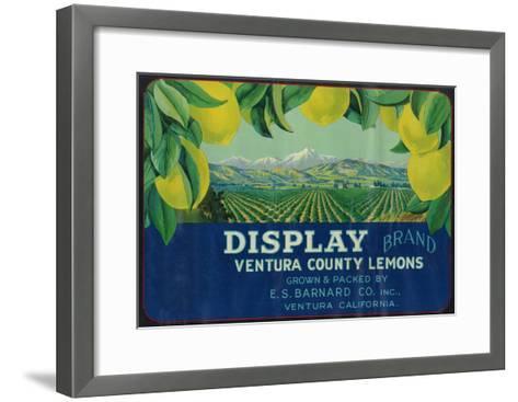 Display Lemon Label - Ventura, CA-Lantern Press-Framed Art Print
