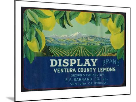 Display Lemon Label - Ventura, CA-Lantern Press-Mounted Art Print