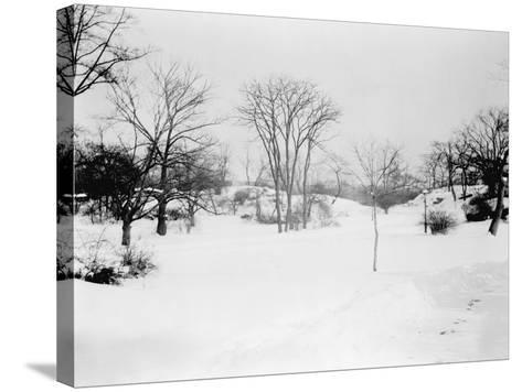 First Snowfall of the Season in Central Park NYC Photo - New York, NY-Lantern Press-Stretched Canvas Print