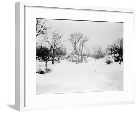 First Snowfall of the Season in Central Park NYC Photo - New York, NY-Lantern Press-Framed Art Print