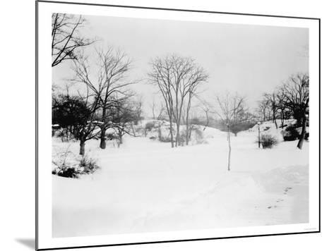 First Snowfall of the Season in Central Park NYC Photo - New York, NY-Lantern Press-Mounted Art Print