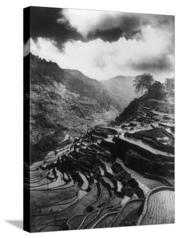 Rice Terraces in the Philippines Photograph - Philippines-Lantern Press-Stretched Canvas Print