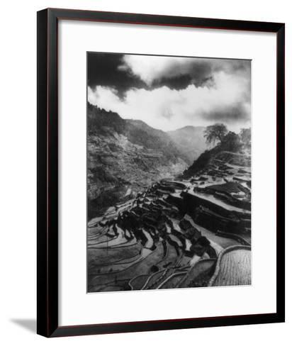 Rice Terraces in the Philippines Photograph - Philippines-Lantern Press-Framed Art Print