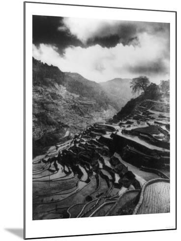 Rice Terraces in the Philippines Photograph - Philippines-Lantern Press-Mounted Art Print