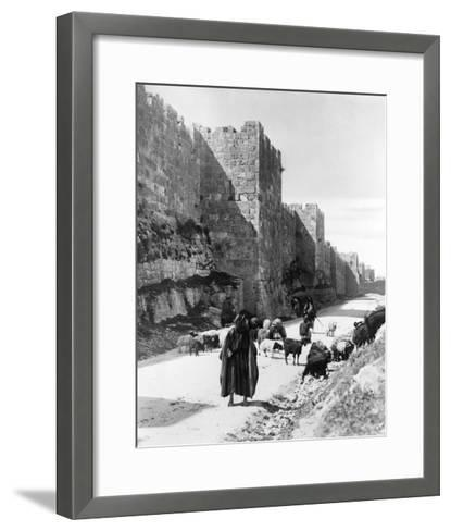 Sheep Taken to Market in Jerusalem Photograph - Jerusalem, Palestine-Lantern Press-Framed Art Print
