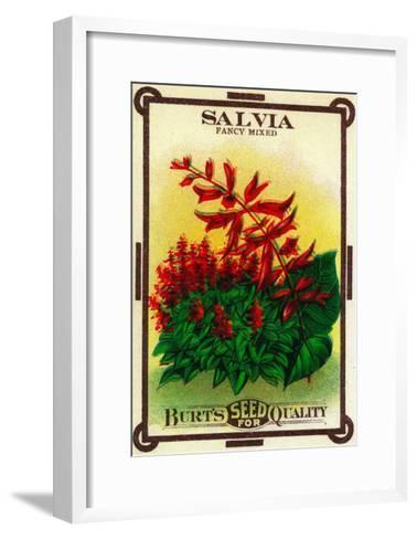 Salvia Seed Packet-Lantern Press-Framed Art Print