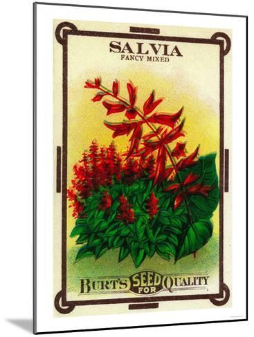 Salvia Seed Packet-Lantern Press-Mounted Art Print