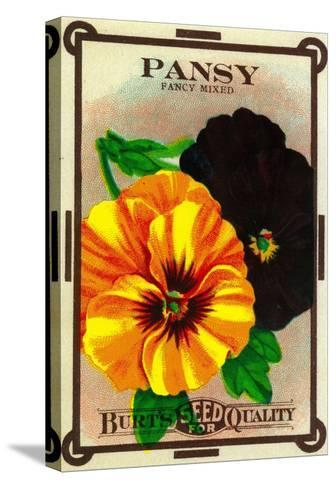 Pansy Seed Packet-Lantern Press-Stretched Canvas Print