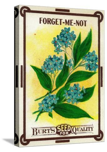 Forget Me Not Seed Packet-Lantern Press-Stretched Canvas Print